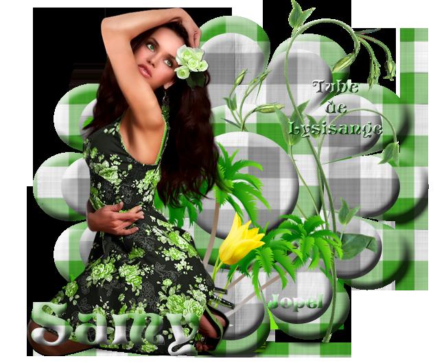 Tubes de Lysisange fleurs