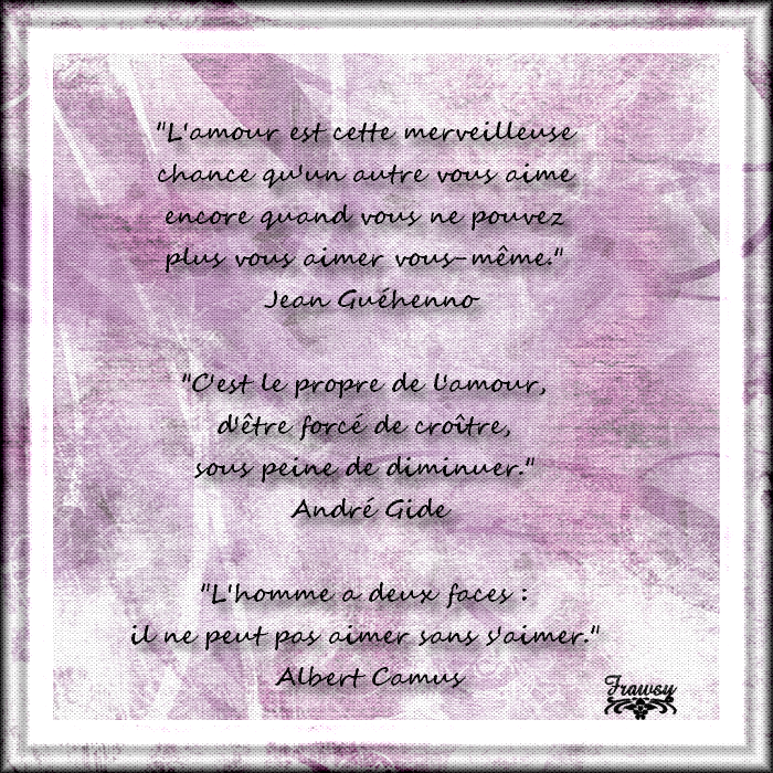 Quelques citations sur l'amour - 3