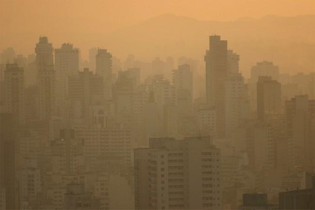 La COP 21 … !!!