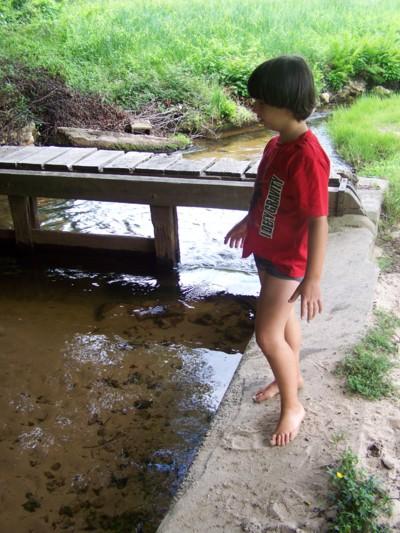Blog de chipiron :Un chipiron dans les Landes, Au lavoir