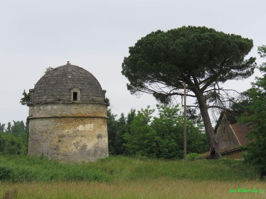 balade en Langonais (33)