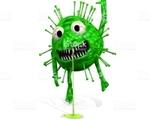 Conaro virus