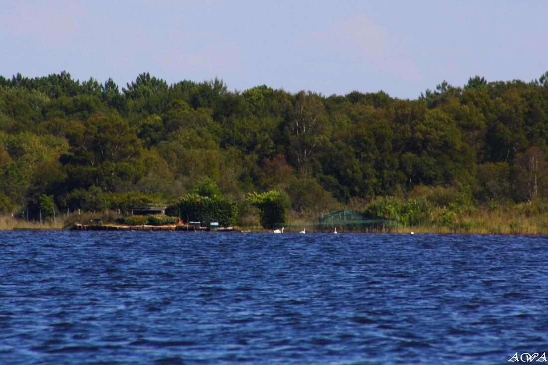 Lacanau lac, en aout 2014
