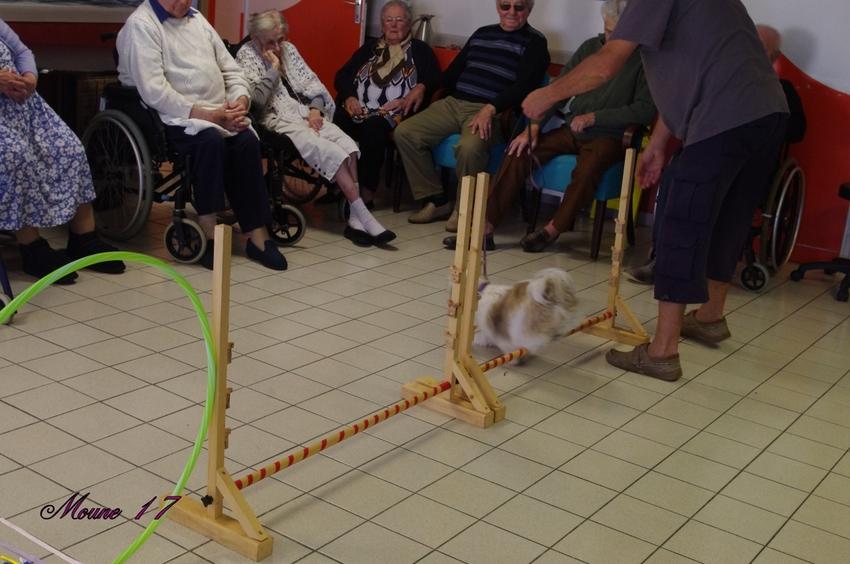 Animation à la maison de retraite de St Pierre d'Oléron vendredi 20 septembre 2013