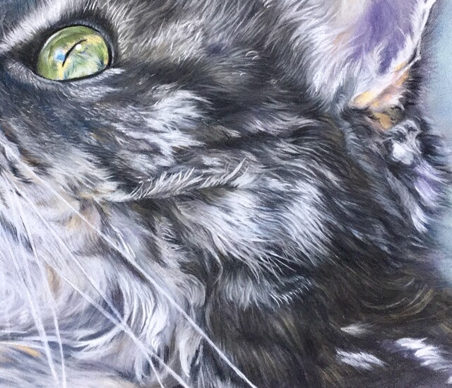 Le chat de l'atelier