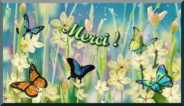 Grand Merci Pour La Naissance De Mon Petit Fils Bea Kimcat Blog Bis