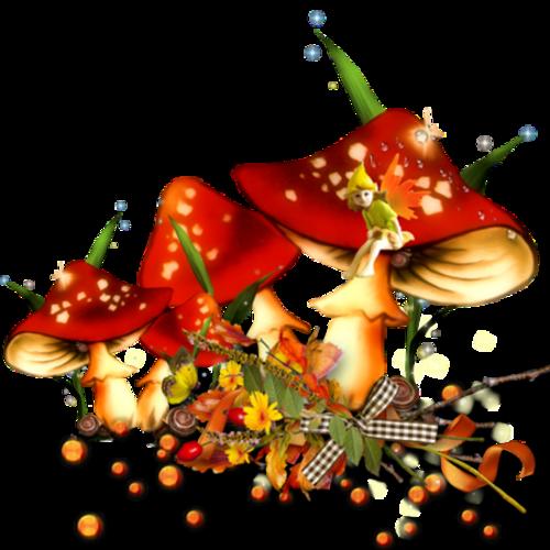 Elements d'Automne ( clusters )
