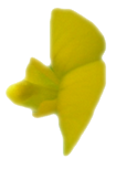 Luzerne tachetée