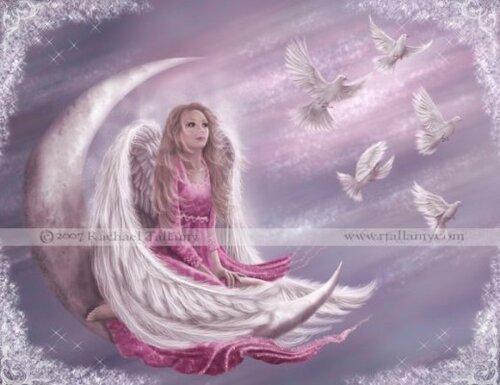 fond   pour mon  blog  marquise des anges