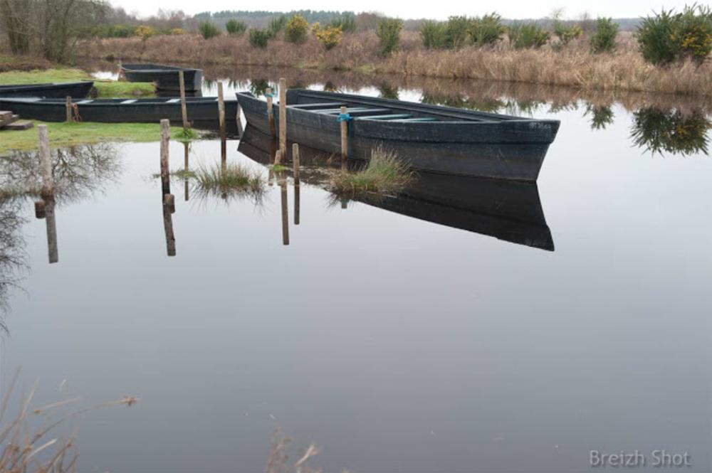 Brière :  Les pieux se reflètent dans l'eau qui a envahi les rives. Des touffes d'herbes émergent ici et là.