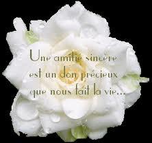 Amitie-copie-1.jpg