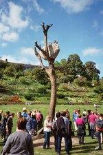 bronzebaum der documenta