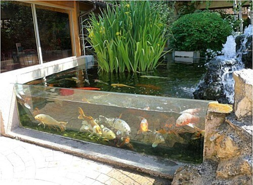 aquarium-Bugues.jpg