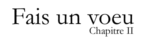 Chapitre II - 014