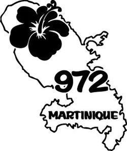 Préparatifs de notre déménagement en Martinique