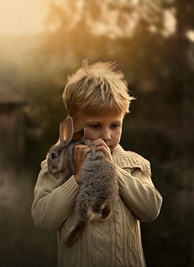 Innocence - Le cottage de Gwladys