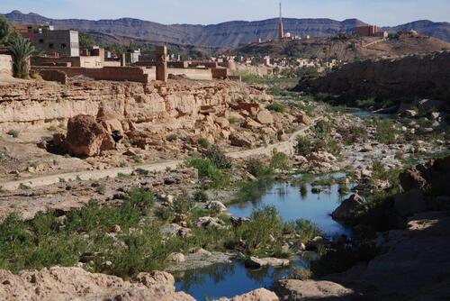 Canyon creusé par l'oued et vu sur Tara
