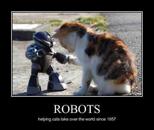 robots helping cats