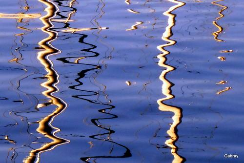 De beaux reflets dans l'eau