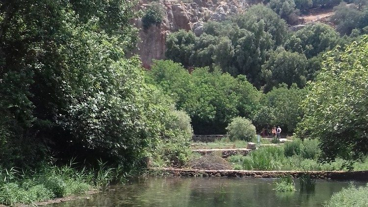Le fleuve Jourdain (Photo d'illustration)