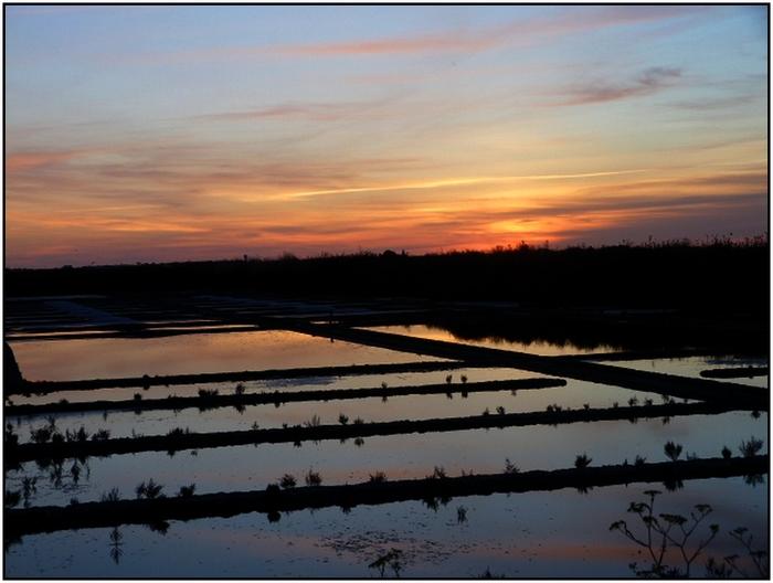 les marais salants de Guérande au crépuscule