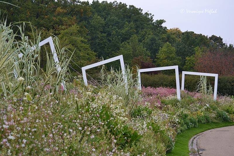 Parc floral de Paris :  Thème 2015 : Graphisme et texture
