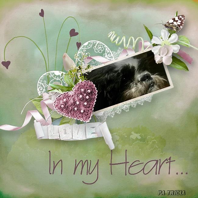 Dans mon coeur