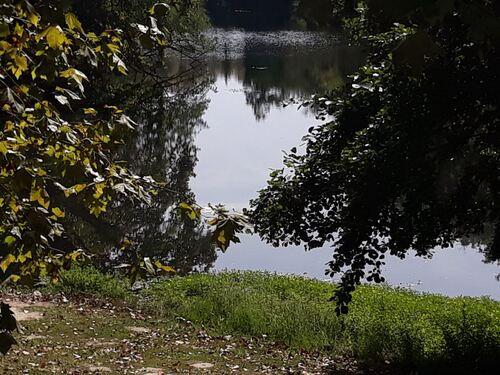 Sur le lac du bois de Boulogne