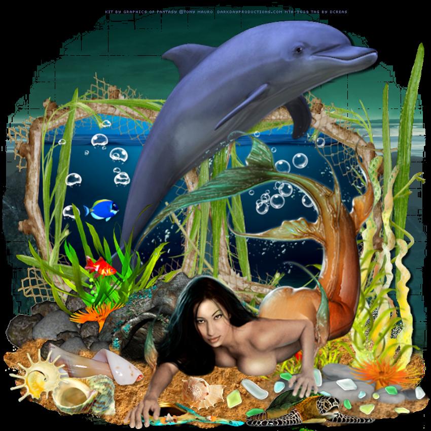 Sirène et Dauphin