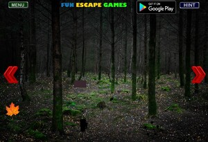 Jouer à Dark forest fun escape