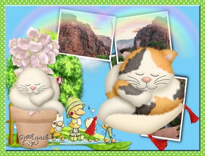 Défi pour Beauty ( le chat dort )