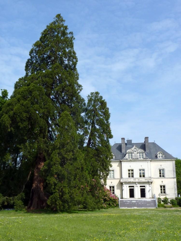 Château de la Fleuriaye