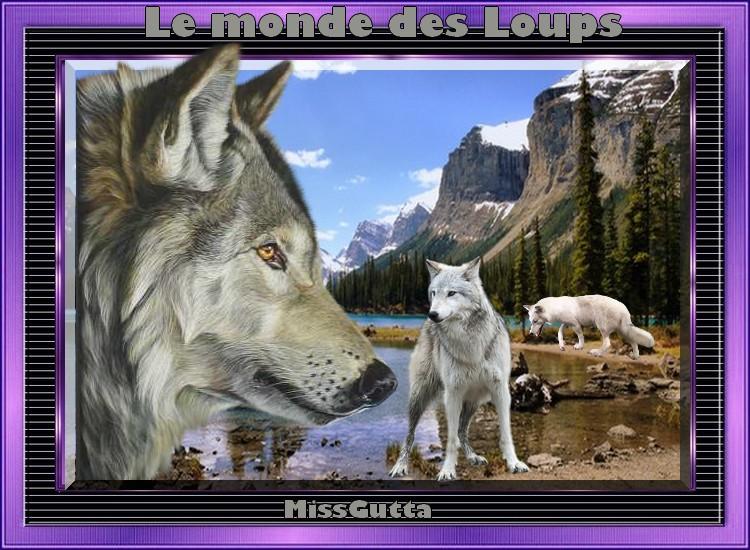 Défi amie Capucine ( Le monde des loups )