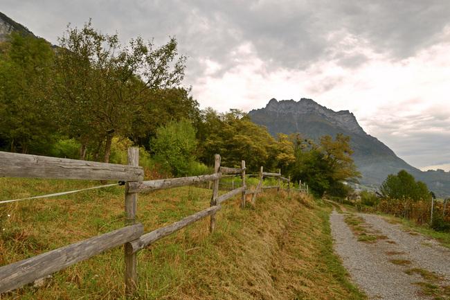 2014.10.12 St-Jean-De-La-Porte (Rhône-Alpes, Isère)