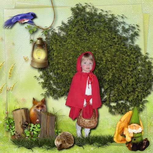 Kit Forêt Enchantée