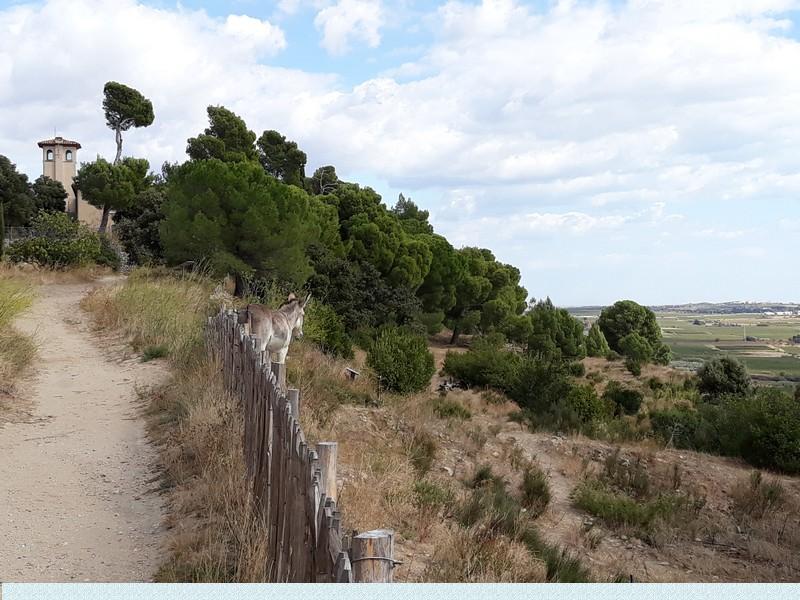 Echappée en Languedoc (2)