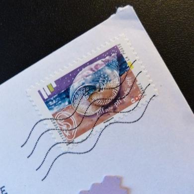 Seeds Of Love 2016 : une dernière enveloppe...