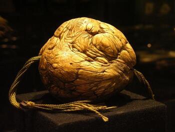 Le bézoard, la pierre aux mille vertus