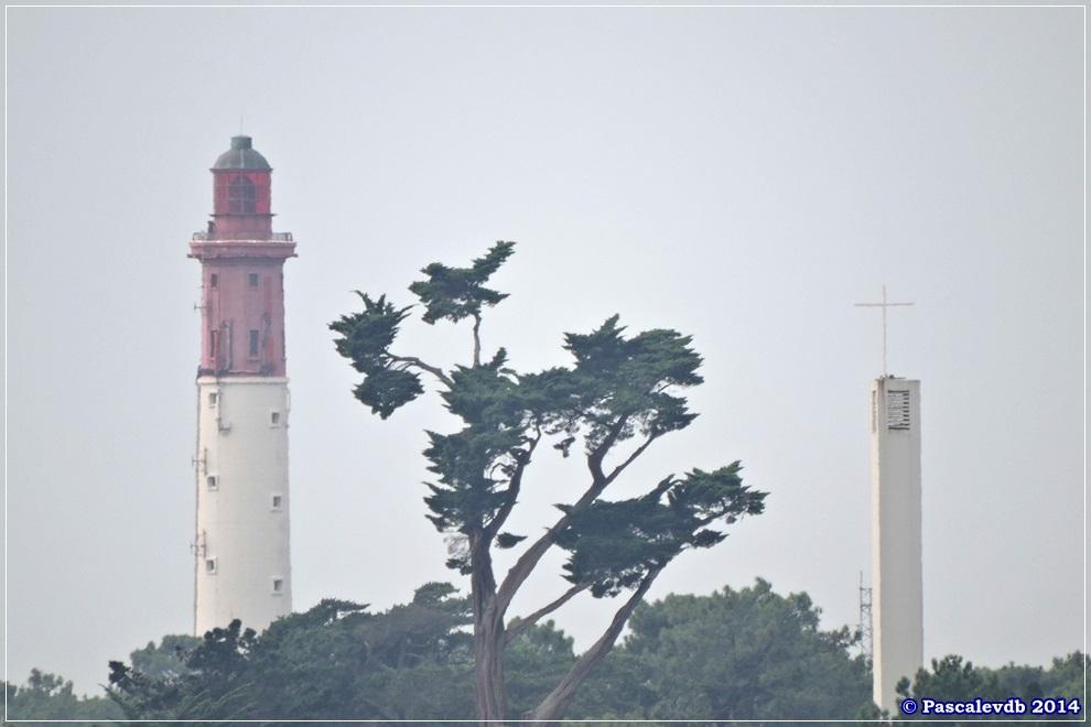 Le tour de l'île aux Oiseaux - 6/8