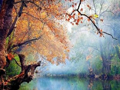 Blog de roselyne :Humanité, Nature,  Amour et lumière, Les couleurs de la nature