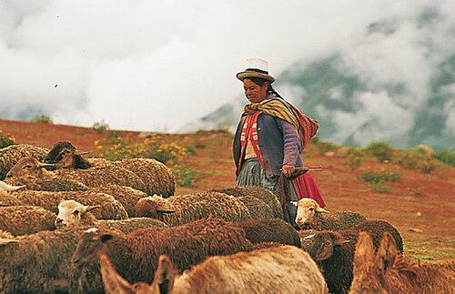 Au Pérou...