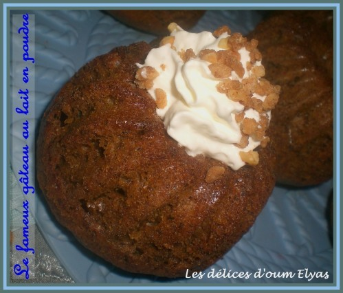Gâteau au lait en poudre 2 (2)