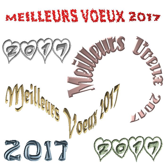 Écritures Meilleurs Vœux 2017