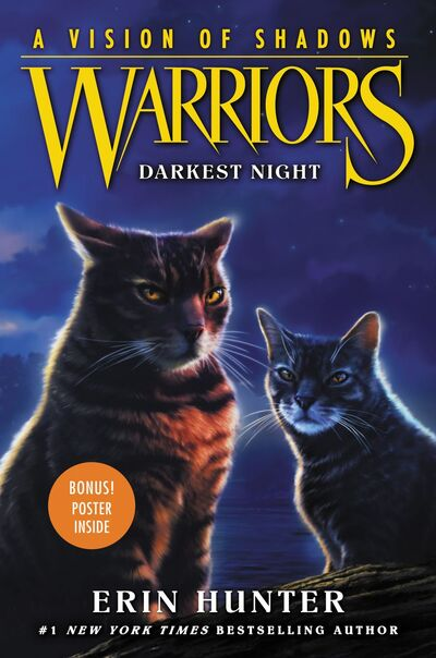(Tome 4) Darkest Night