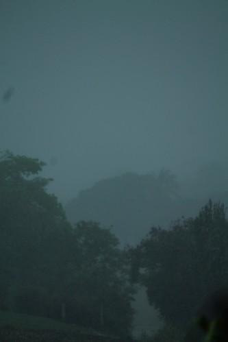 jardin-orage-0865.JPG