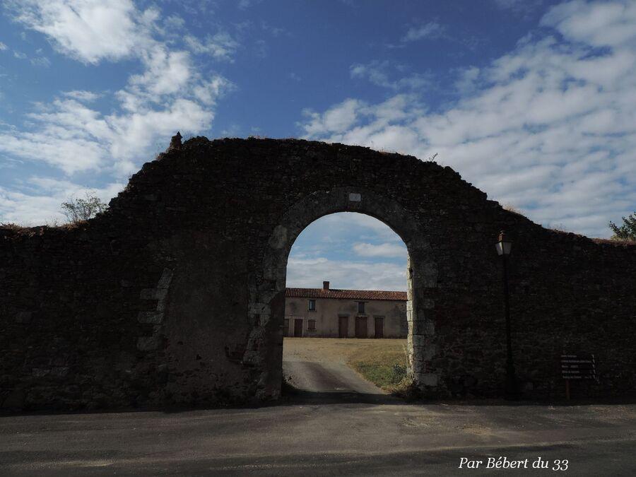 Saint Florent le Vieil  (2)