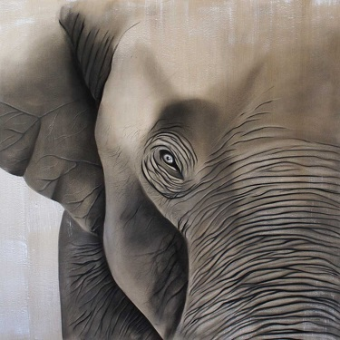 L'éléphant ...