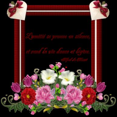 Proverbe belle rencontre amitie