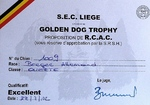Résultat du Golden Dog Trophy !