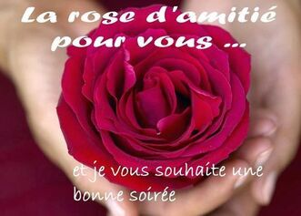 La rose d'amitié pour vous... et je vous souhaite une bonne soirée #amitie  amitie roses | Bonne soirée, Amitié, C'est bon